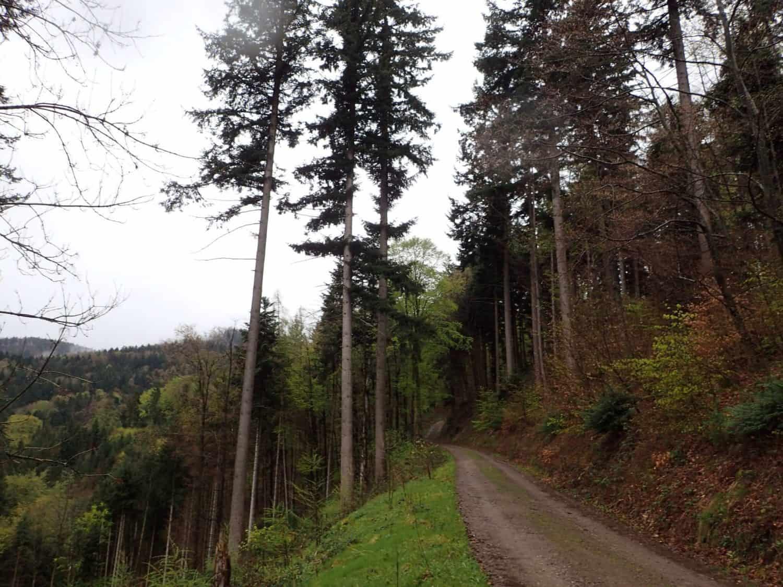 Test hike: Zweitälersteig Day 1