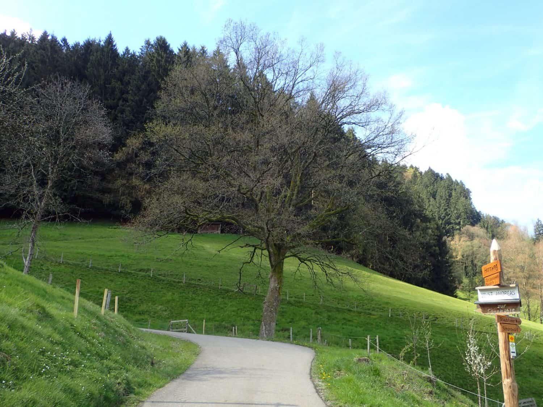 test hike: Zweitaelersteig Day ii