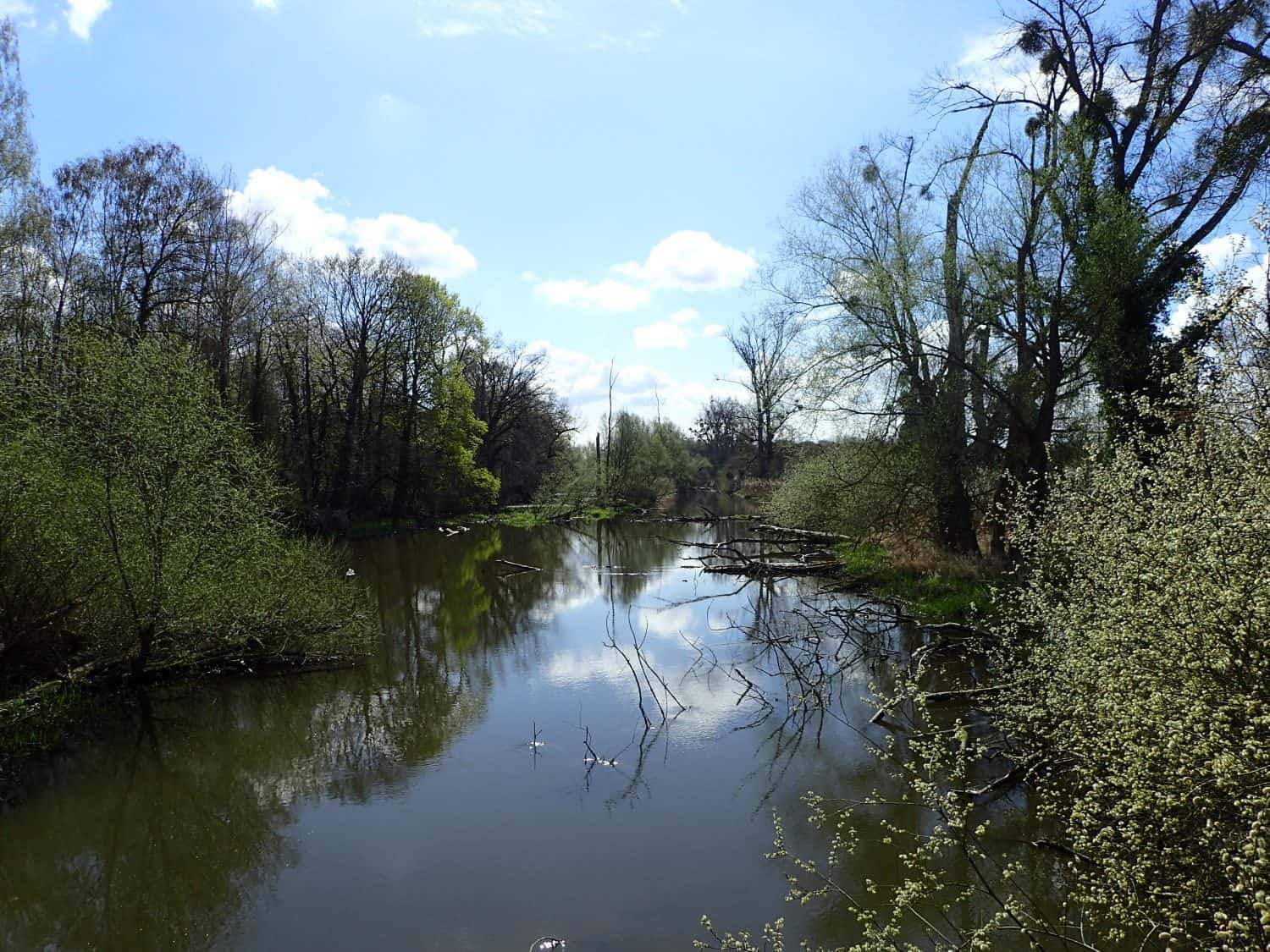 Hiking the Treidlerweg along old arms of the rhine river