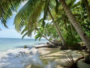 Fijian culture - Staying with locals - Amazing beach on Kadavu Island