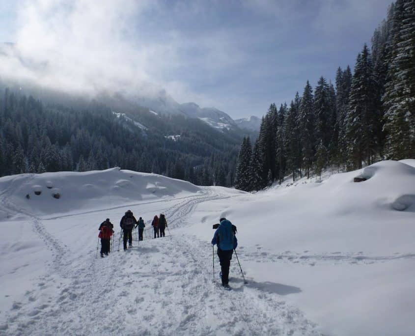 The group snowshoeing through a white winter landscape