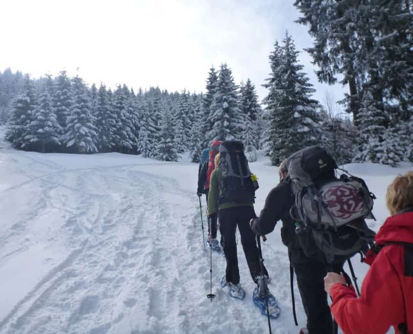 The group hiking uphill on snowshoes