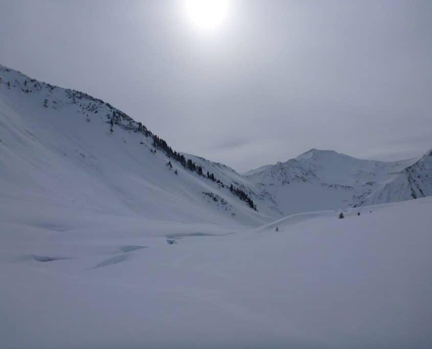 Very nice snowy landscape