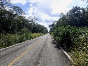 Just a normal day of bicycle touring - the road ahead