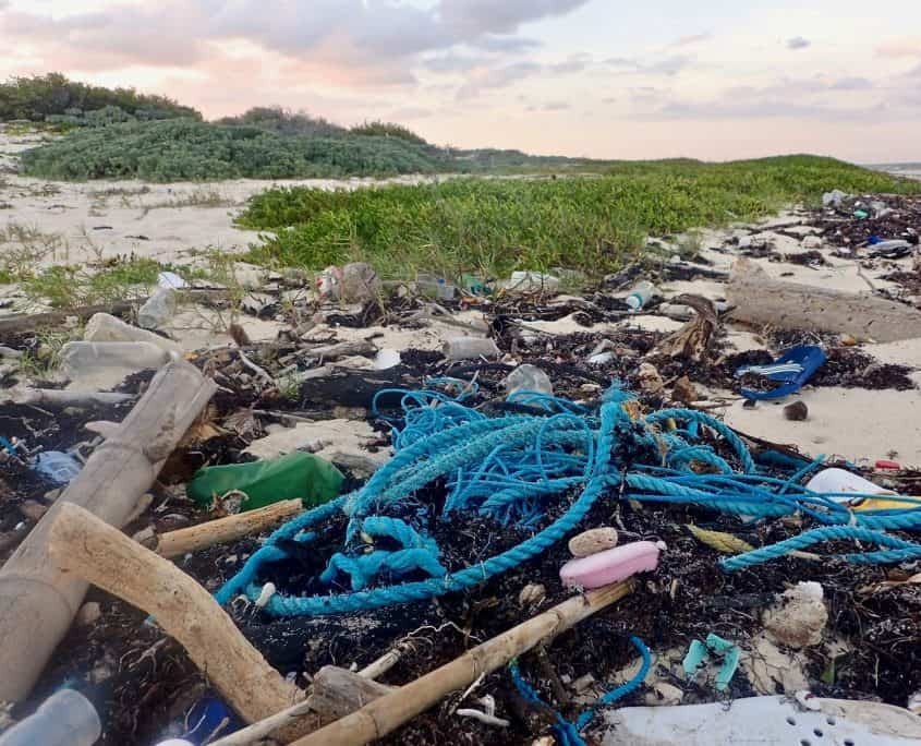 Cycling through Sian Ka'an Biosphere Reserve - trash at the beach