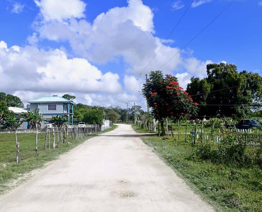 Bicycle Touring through Belize - Crooked Tree Wildlife Sanctuary
