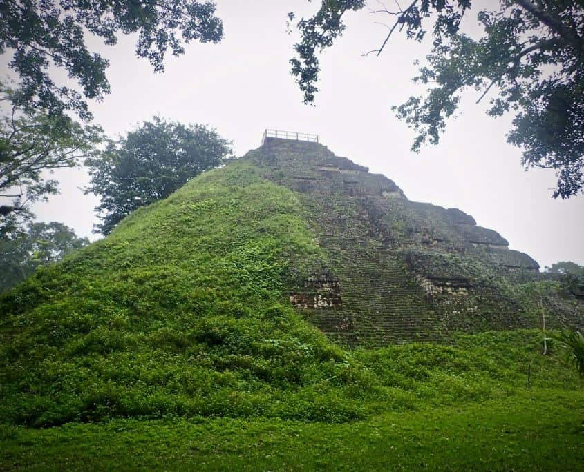 Tikal - A pyramid that is half overgrown by the surrounding jungle