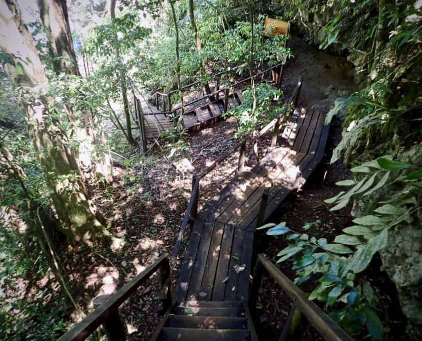 Wooden stairs leading through the jungle at Semuc Champey