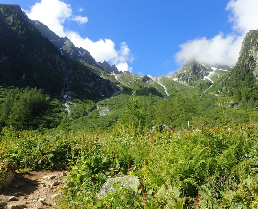TMB day 8 - Champex-Lac to Trient via Alp Bovine